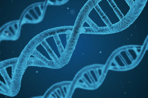 La union definitiva para el analisis genetico ha llegado