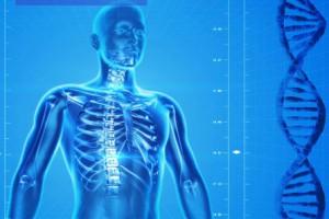 que es la fibromialgia y como tratarla